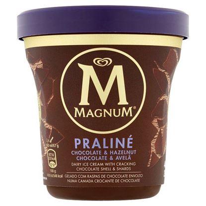 Magnum Praliné Lody 440 ml