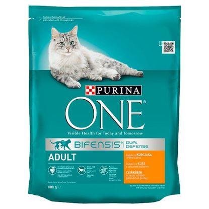 PURINA ONE Adult Pełnoporcjowa karma dla kotów bogata w kurczaka i pełne ziarna 800 g