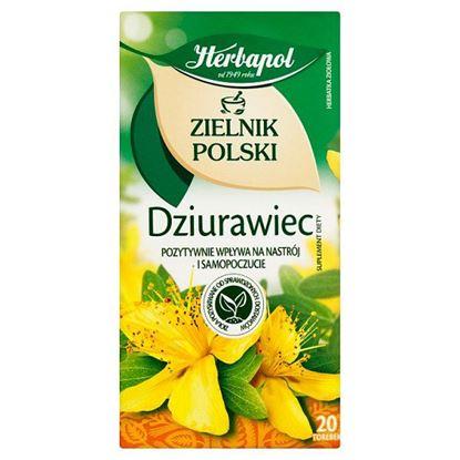 Herbapol Zielnik Polski Dziurawiec Herbatka ziołowa Suplement diety 30 g (20 x 1,5 g)