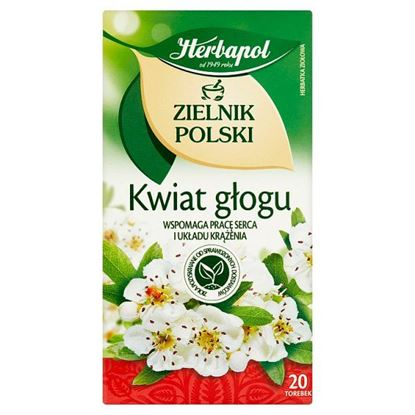 Herbapol Zielnik Polski Kwiat głogu Herbatka ziołowa 40 g (20 x 2 g)