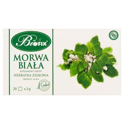 Bifix Suplement diety herbatka ziołowa morwa biała 40 g (20 x 2 g)