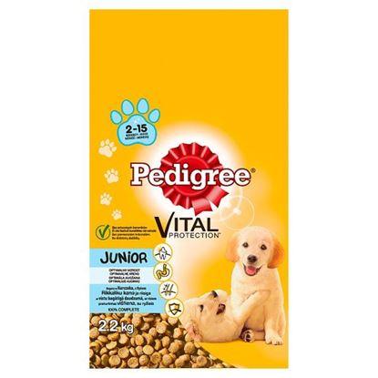 Pedigree Vital Protection Junior 2-15 miesięcy Karma pełnoporcjowa bogaty w kurczaka z ryżem 2,2 kg