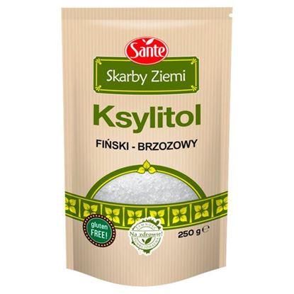 Sante Skarby Ziemi Ksylitol fiński-brzozowy 250 g