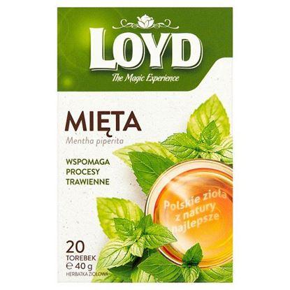 Loyd Herbatka ziołowa mięta 40 g (20 x 2 g)