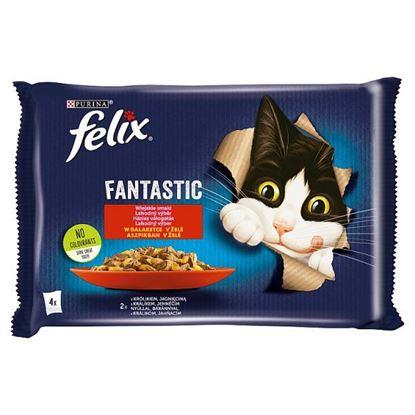 Felix Fantastic Karma dla kotów wiejskie smaki w galaretce 340 g (4 x 85 g)