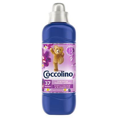Coccolino Purple Orchid & Blueberries Płyn do płukania koncentrat 925 ml (37 prań)